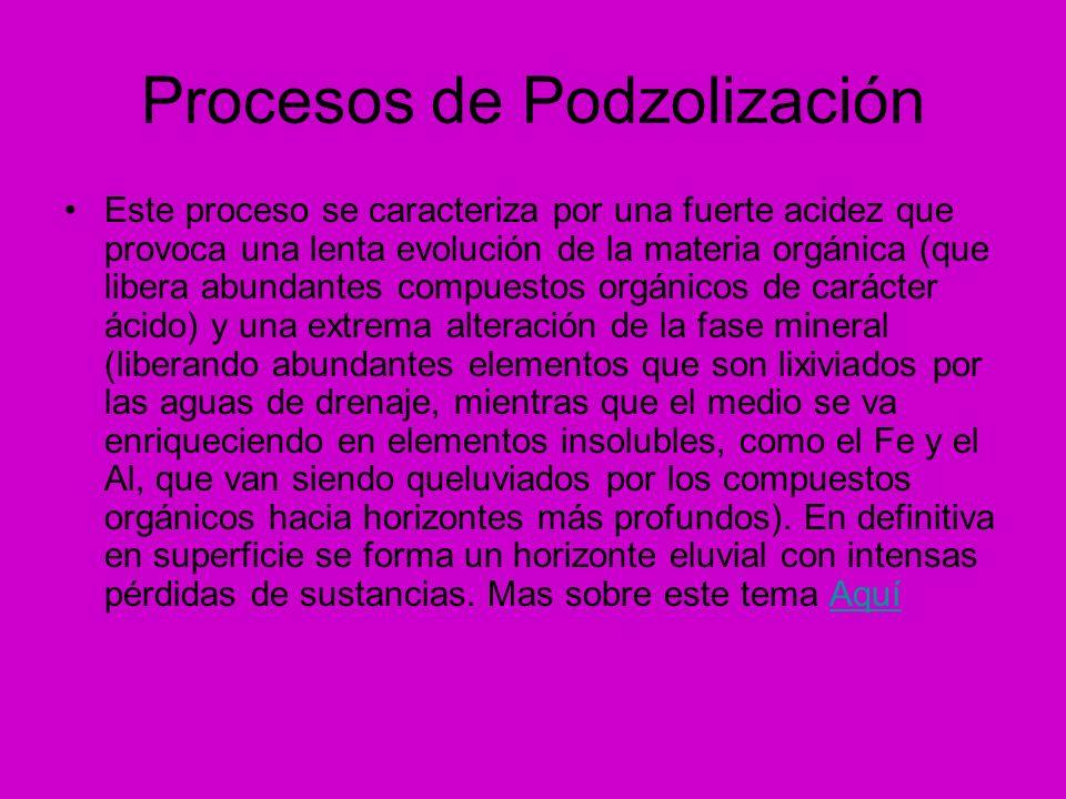 Procesos de Podzolización