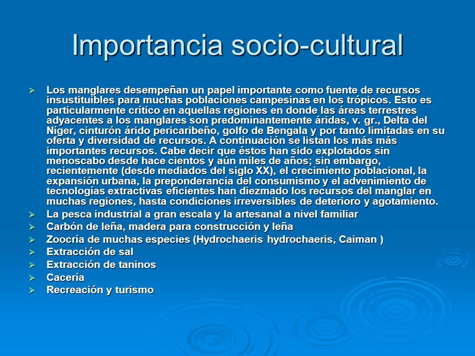 Importancia socio-cultural