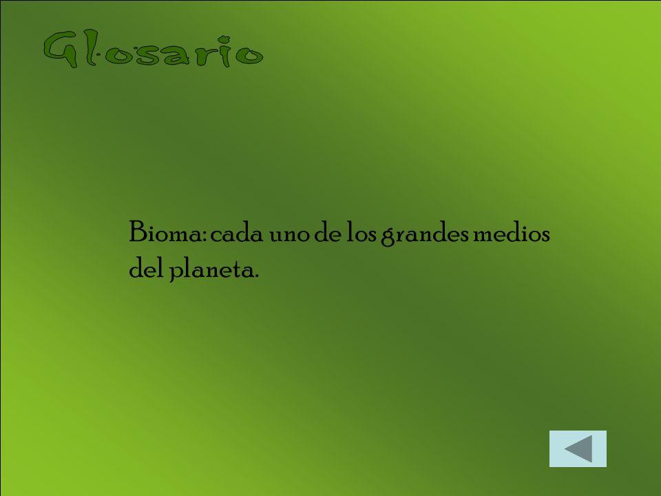 Glosario Bioma: cada uno de los grandes medios del planeta.