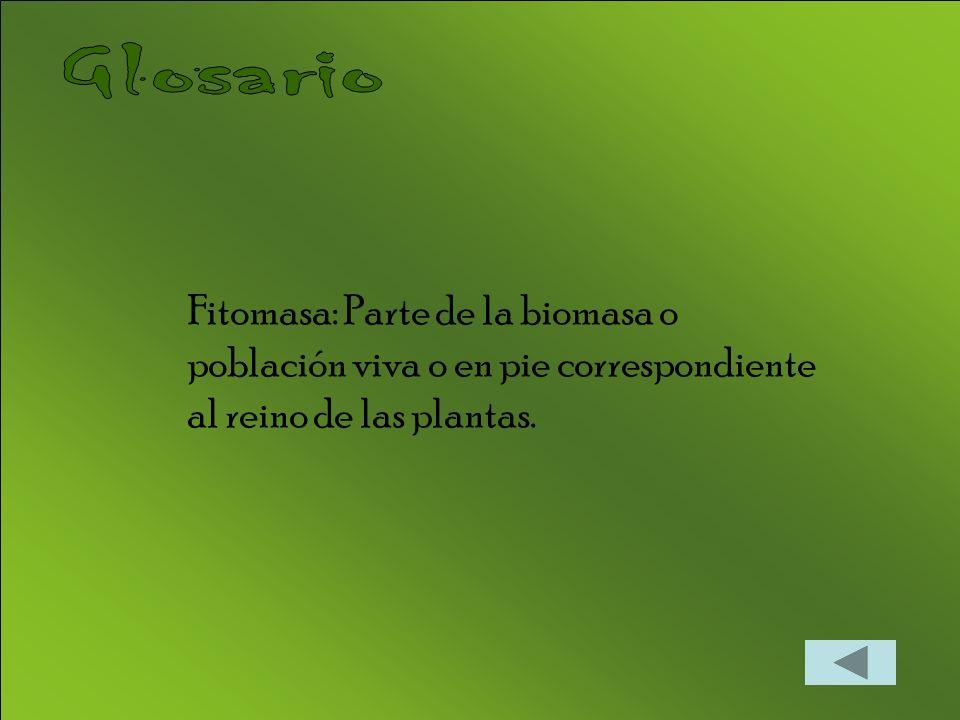 Glosario Fitomasa: Parte de la biomasa o población viva o en pie correspondiente al reino de las plantas.
