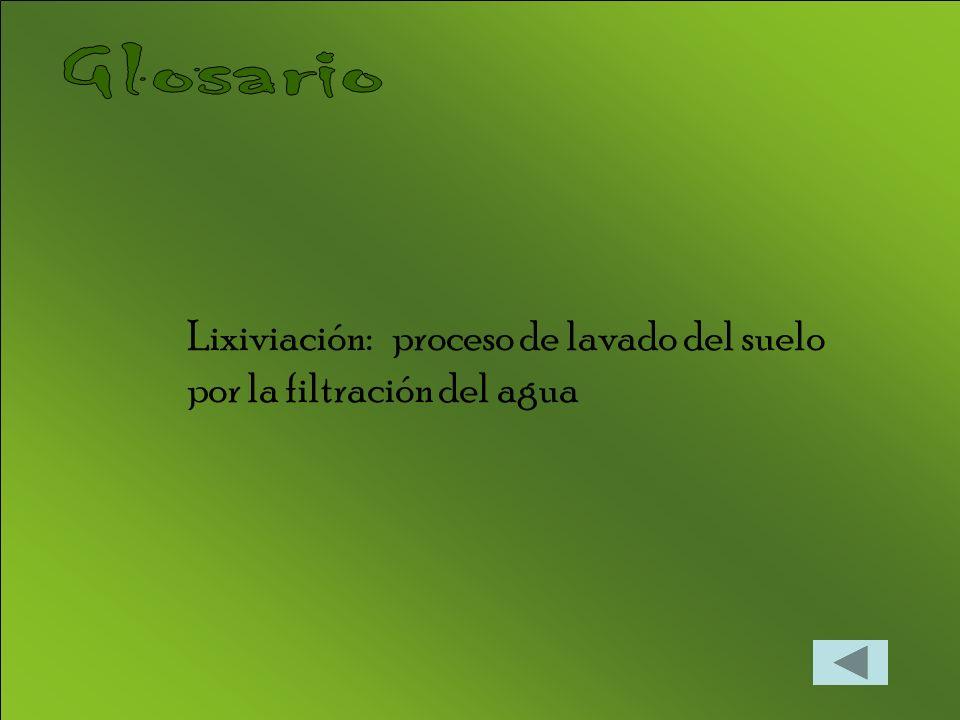 Glosario Lixiviación: proceso de lavado del suelo por la filtración del agua