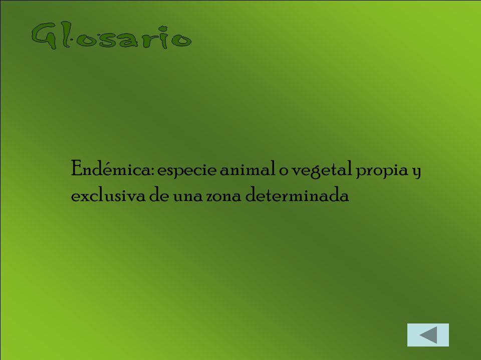 Glosario Endémica: especie animal o vegetal propia y exclusiva de una zona determinada