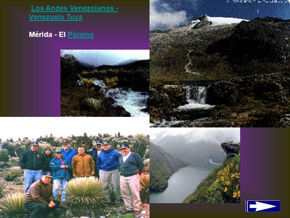 Los Andes Venezolanos - Venezuela Tuya