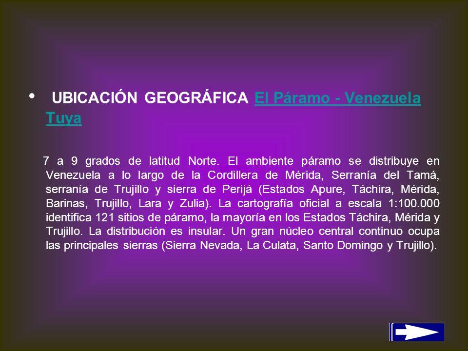 UBICACIÓN GEOGRÁFICA El Páramo - Venezuela Tuya