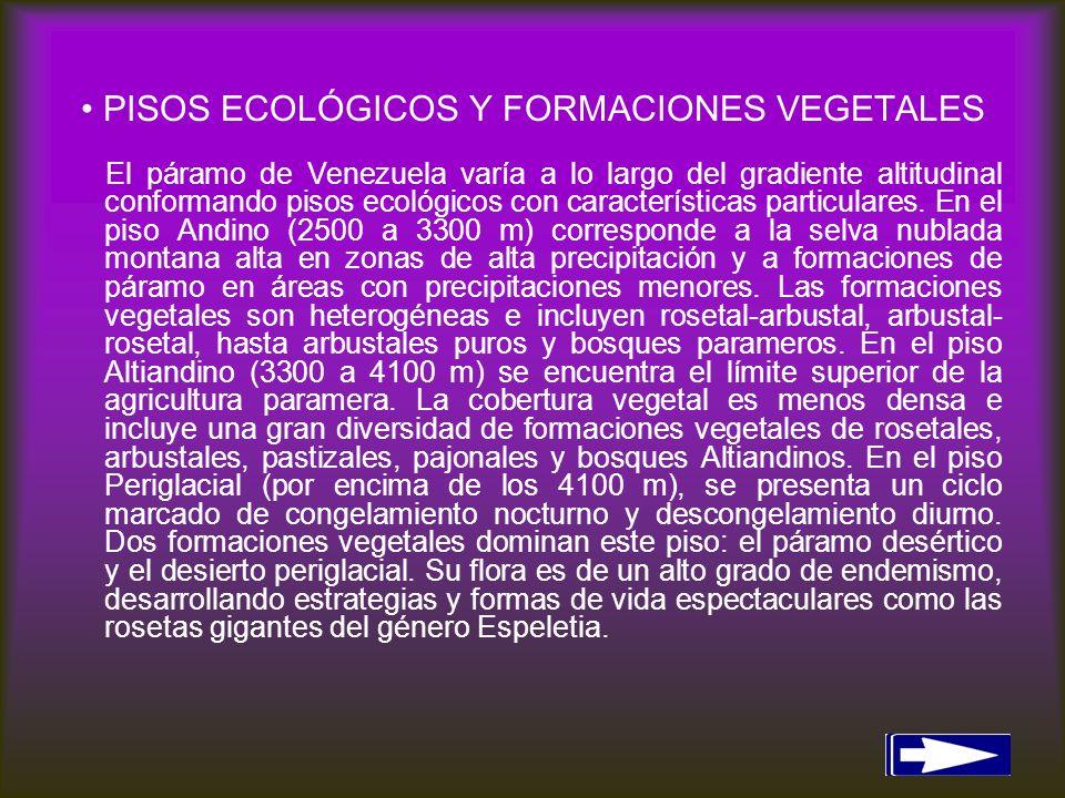 PISOS ECOLÓGICOS Y FORMACIONES VEGETALES