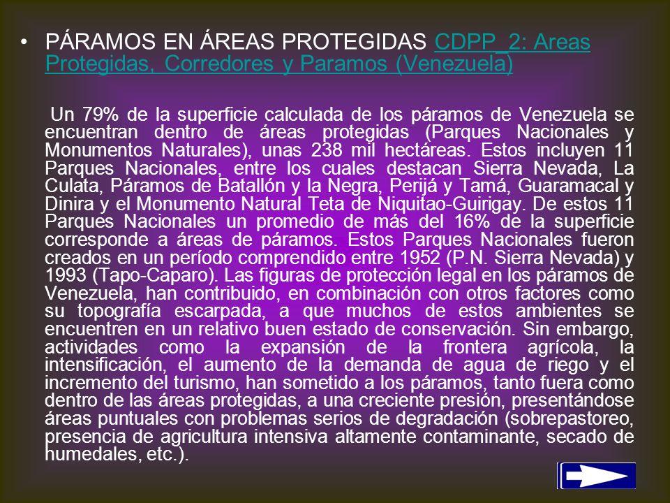 PÁRAMOS EN ÁREAS PROTEGIDAS CDPP_2: Areas Protegidas, Corredores y Paramos (Venezuela)