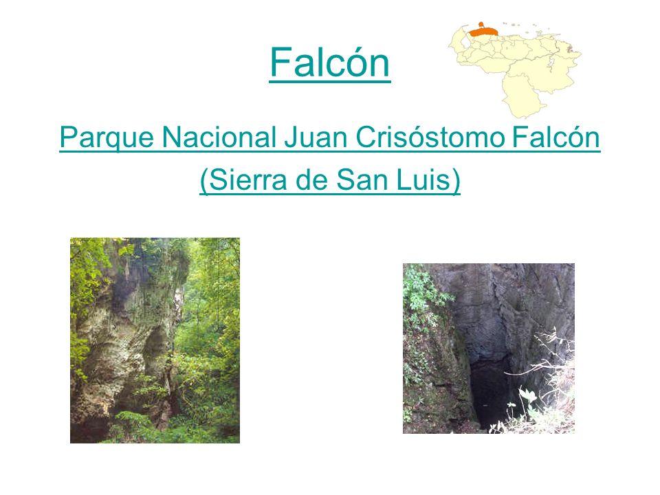 Parque Nacional Juan Crisóstomo Falcón