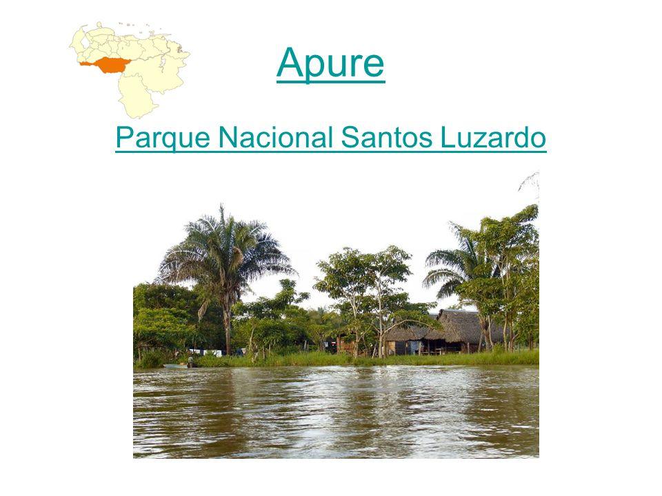 Parque Nacional Santos Luzardo