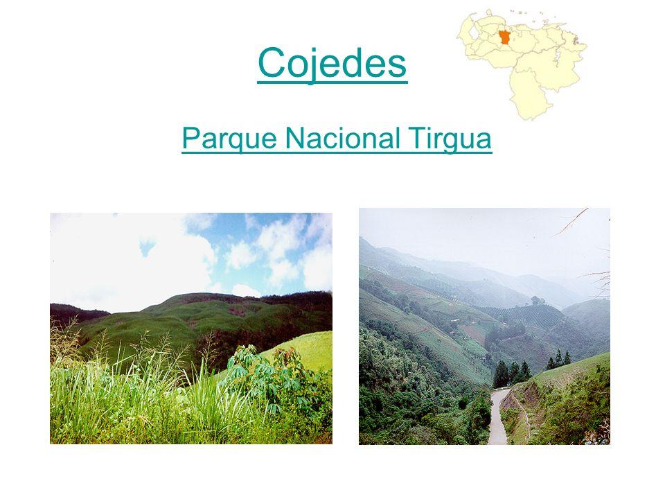 Parque Nacional Tirgua