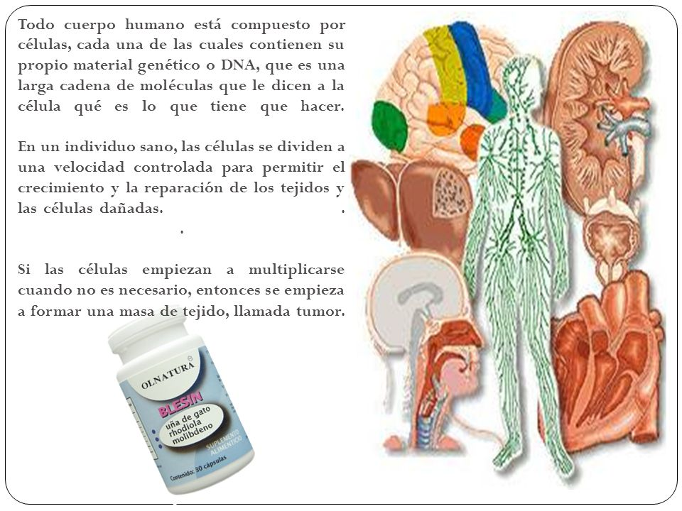 Todo cuerpo humano está compuesto por células, cada una de las cuales contienen su propio material genético o DNA, que es una larga cadena de moléculas que le dicen a la célula qué es lo que tiene que hacer.