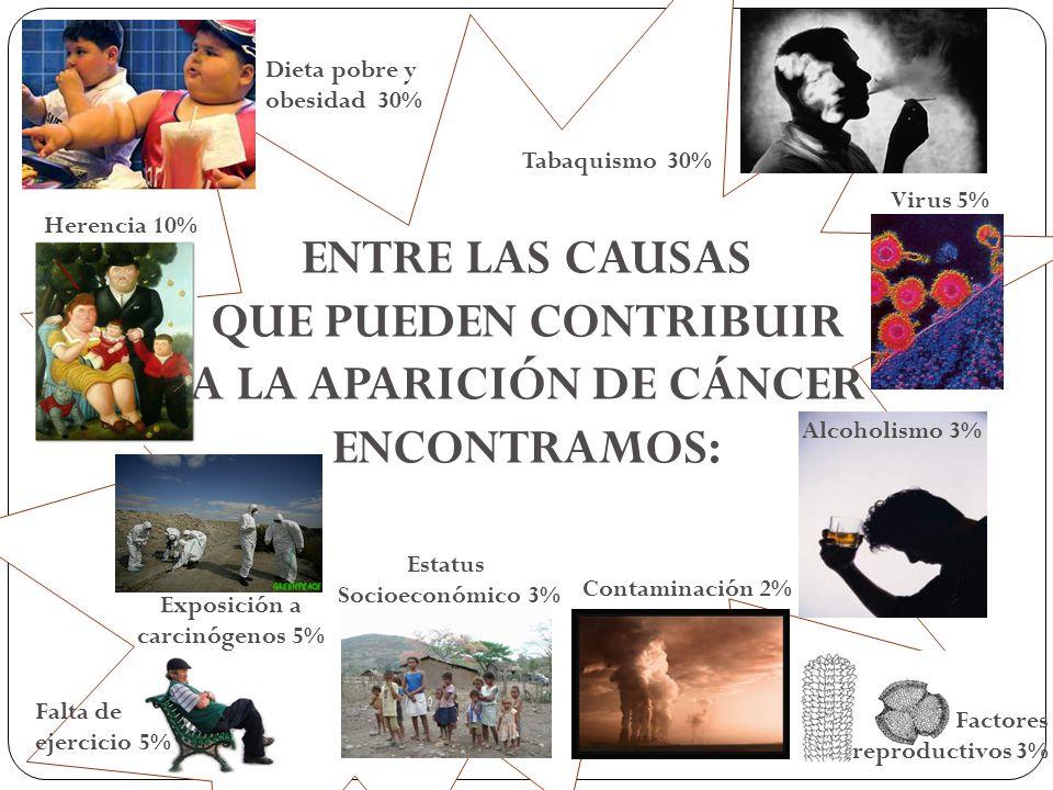 A LA APARICIÓN DE CÁNCER Exposición a carcinógenos 5%