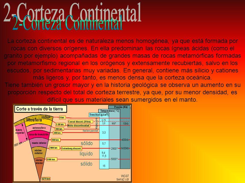 2-Corteza Continental