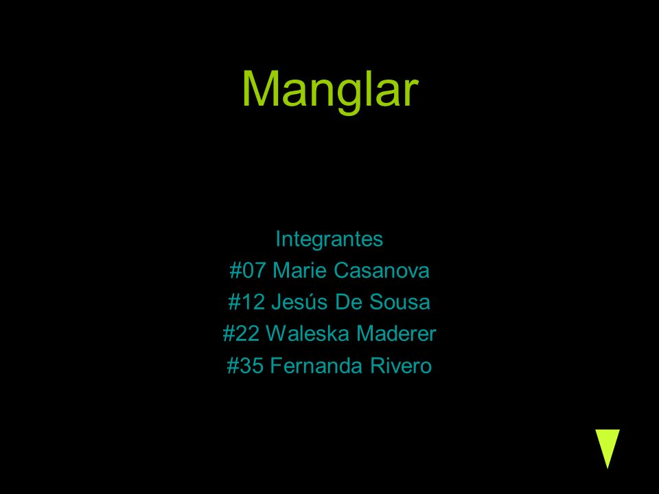 Manglar Integrantes #07 Marie Casanova #12 Jesús De Sousa