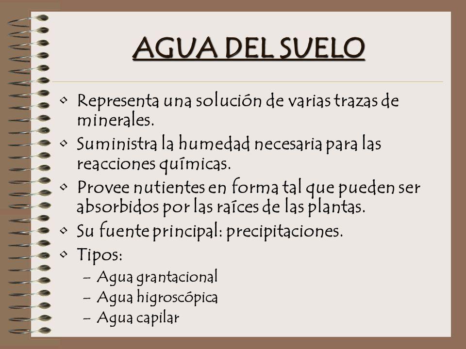 AGUA DEL SUELO Representa una solución de varias trazas de minerales.