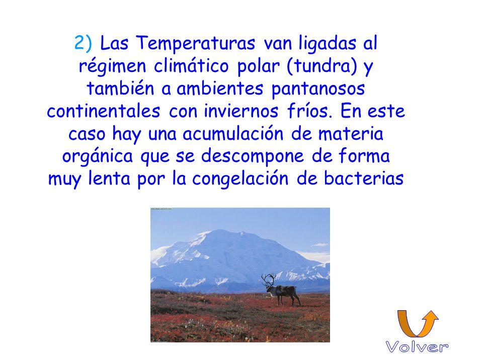 2) Las Temperaturas van ligadas al régimen climático polar (tundra) y también a ambientes pantanosos continentales con inviernos fríos. En este caso hay una acumulación de materia orgánica que se descompone de forma muy lenta por la congelación de bacterias