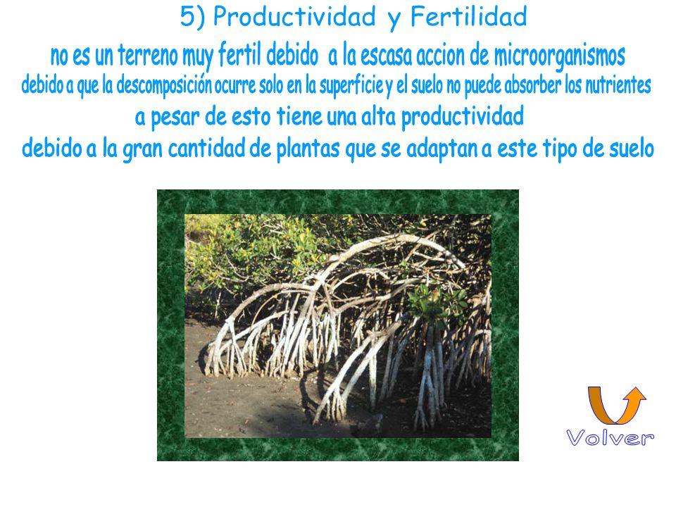 Volver 5) Productividad y Fertilidad