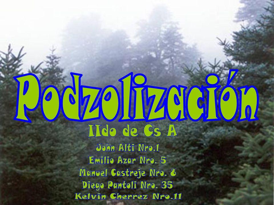 Podzolización IIdo de Cs A John Alti Nro.1 Emilio Azar Nro. 5