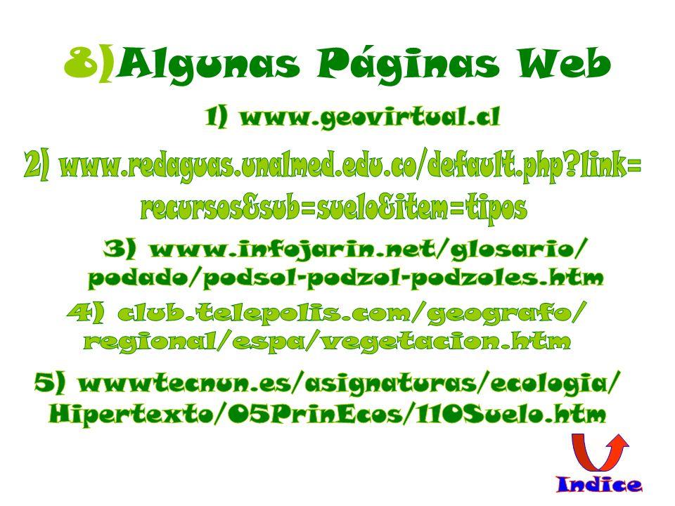 8)Algunas Páginas Web 1) www.geovirtual.cl