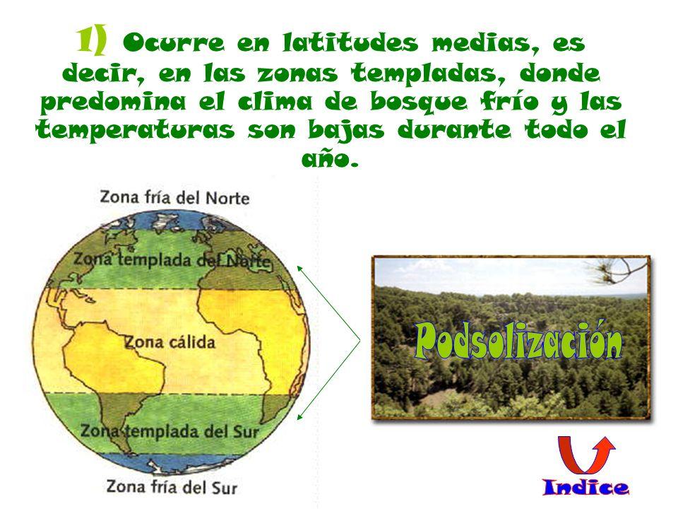1) Ocurre en latitudes medias, es decir, en las zonas templadas, donde predomina el clima de bosque frío y las temperaturas son bajas durante todo el año.
