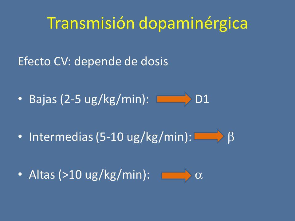 Transmisión dopaminérgica