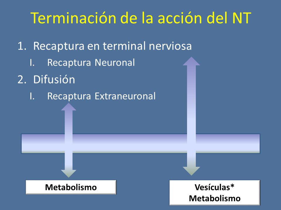 Terminación de la acción del NT