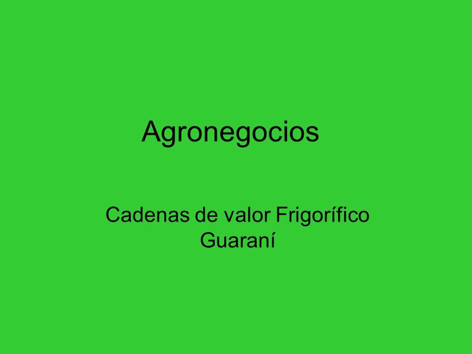 Cadenas de valor Frigorífico Guaraní