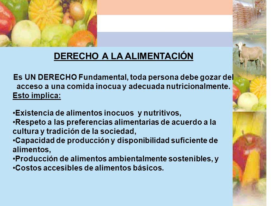 DERECHO A LA ALIMENTACIÓN