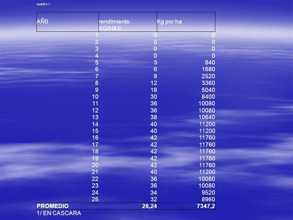 AÑ0 rendimiento Kg por ha KG/HA !/ 1 2 3 4 5 840 6 1680 7 9 2520 8 12