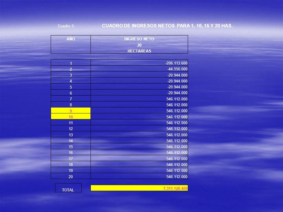 CUADRO DE INGRESOS NETOS PARA 1, 10, 15 Y 20 HAS.