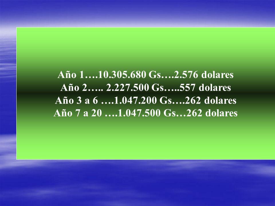 Año 1….10.305.680 Gs….2.576 dolares Año 2….. 2.227.500 Gs…..557 dolares. Año 3 a 6 ….1.047.200 Gs….262 dolares.