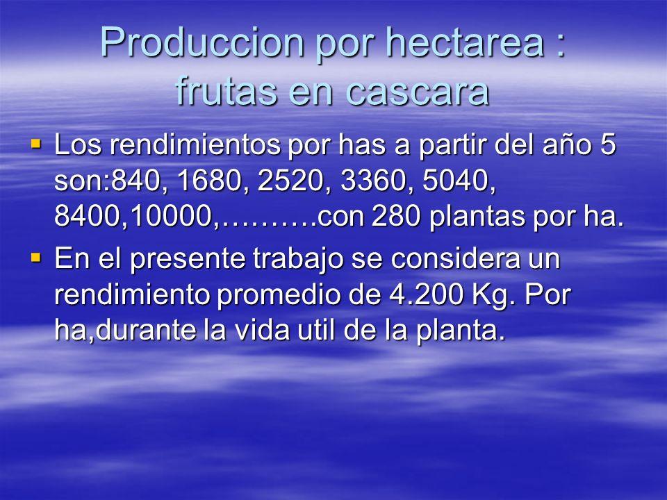 Produccion por hectarea : frutas en cascara
