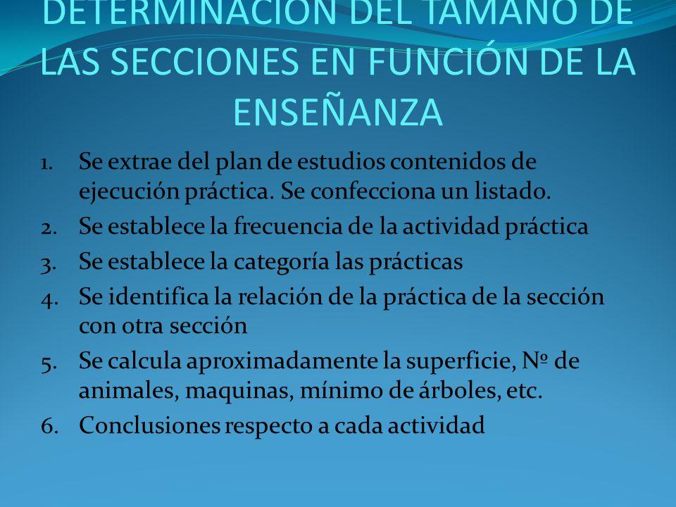DETERMINACIÓN DEL TAMAÑO DE LAS SECCIONES EN FUNCIÓN DE LA ENSEÑANZA
