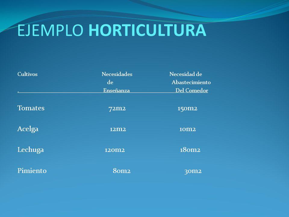 EJEMPLO HORTICULTURA Tomates 72m2 150m2 Acelga 12m2 10m2