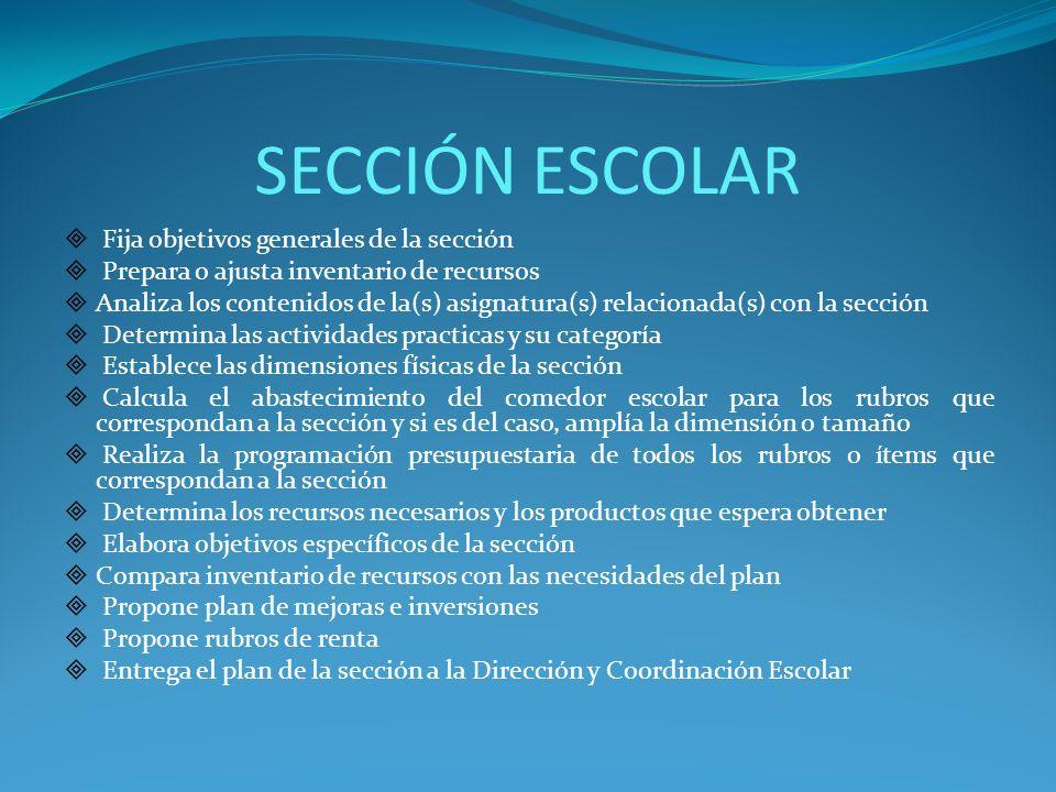 SECCIÓN ESCOLAR Fija objetivos generales de la sección