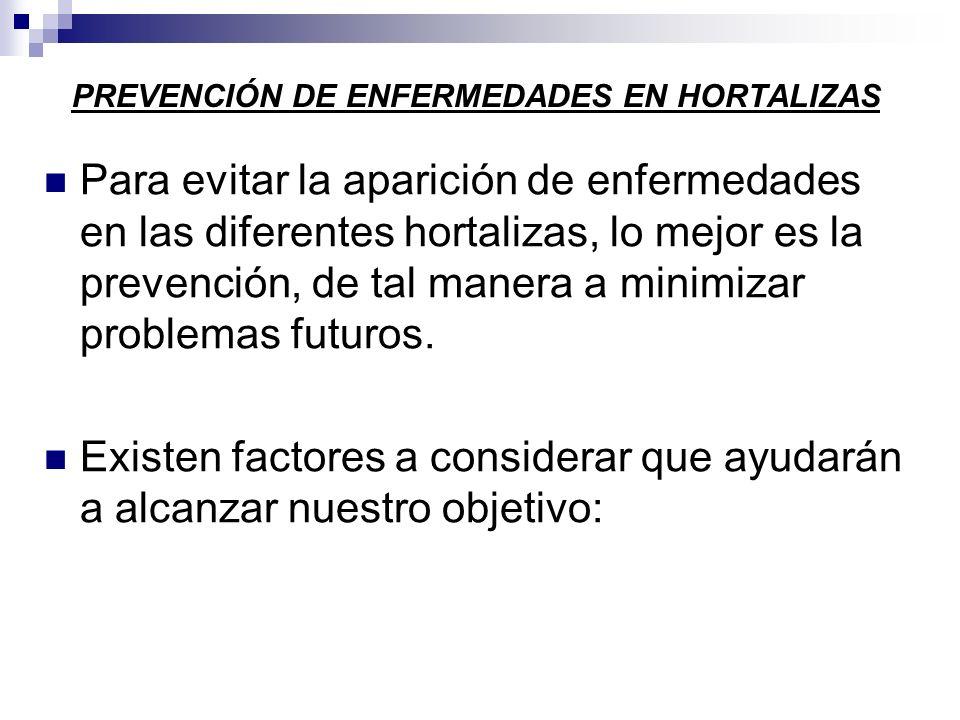 PREVENCIÓN DE ENFERMEDADES EN HORTALIZAS