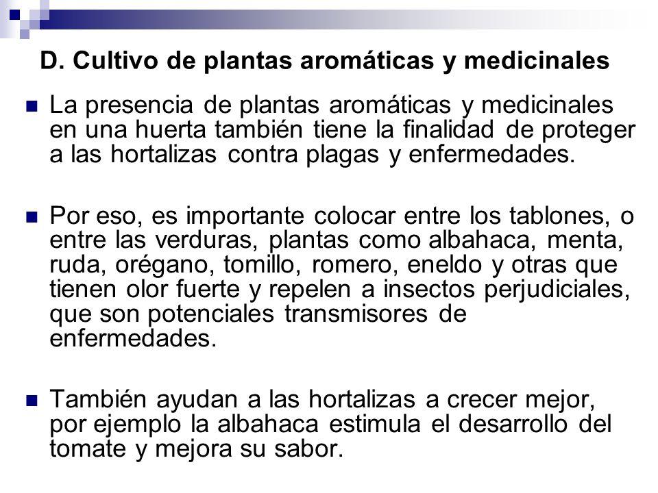 D. Cultivo de plantas aromáticas y medicinales