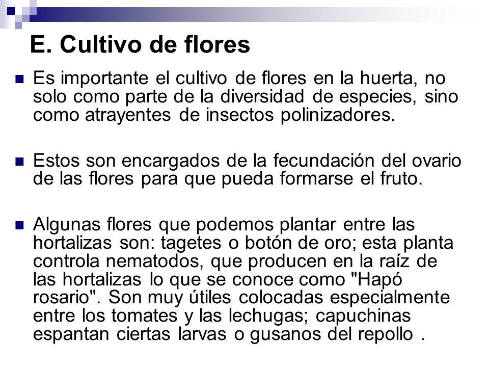 E. Cultivo de flores