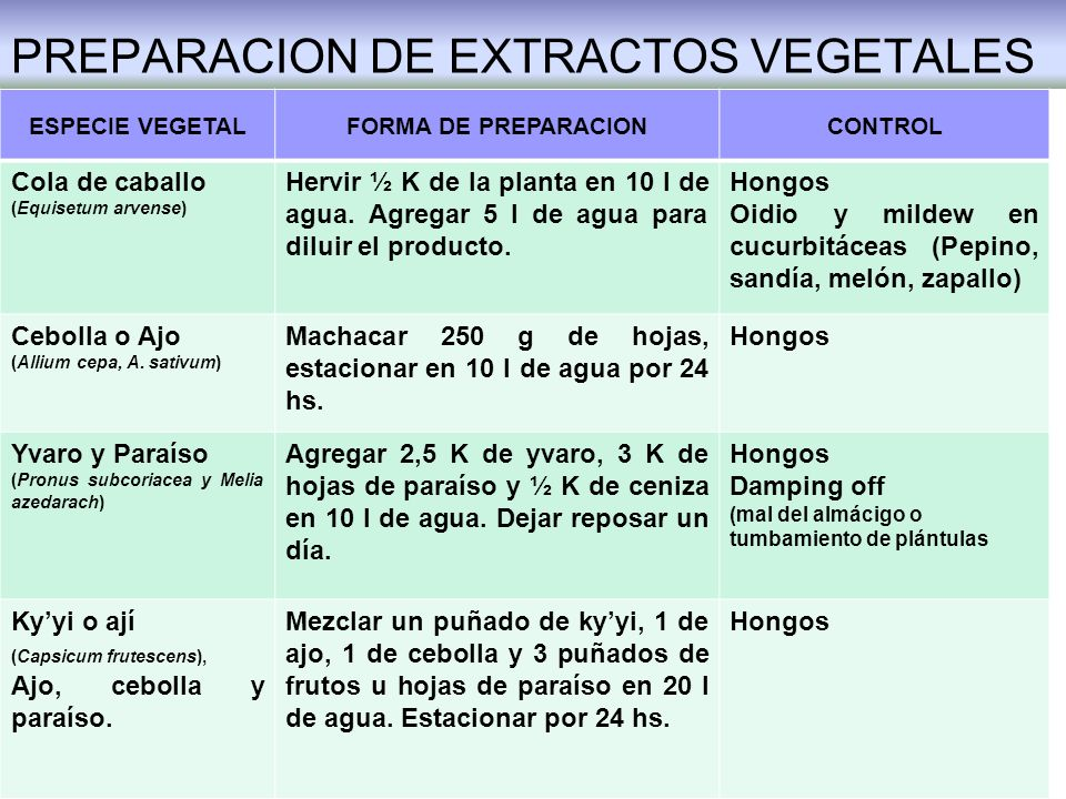 PREPARACION DE EXTRACTOS VEGETALES