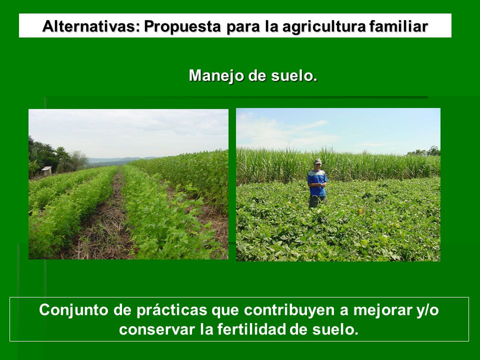 Alternativas: Propuesta para la agricultura familiar