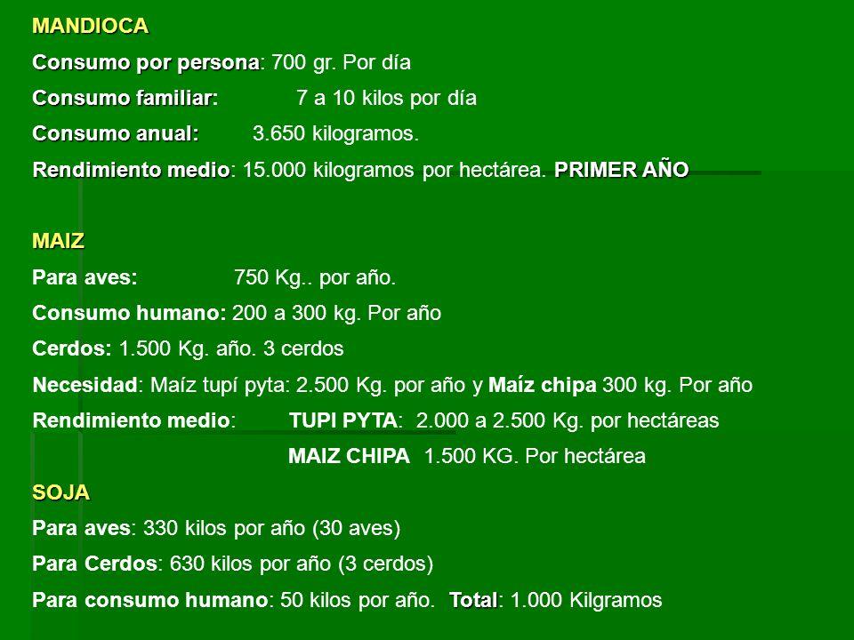 MANDIOCA Consumo por persona: 700 gr. Por día. Consumo familiar: 7 a 10 kilos por día.