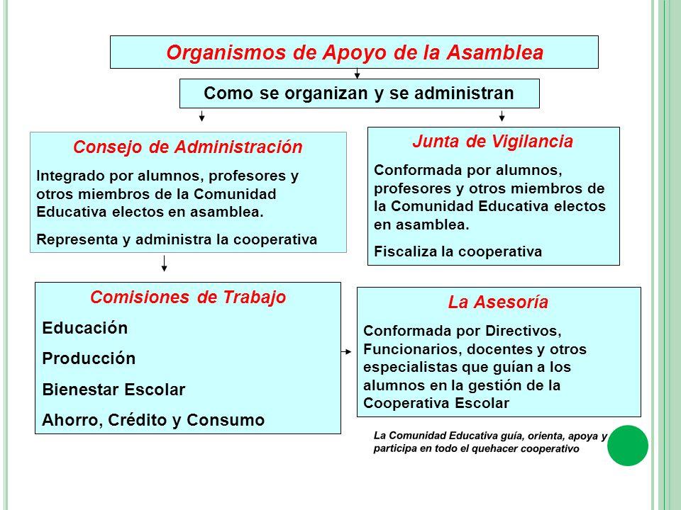 Organismos de Apoyo de la Asamblea