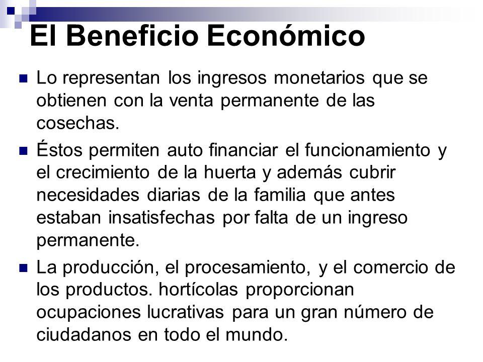 El Beneficio Económico