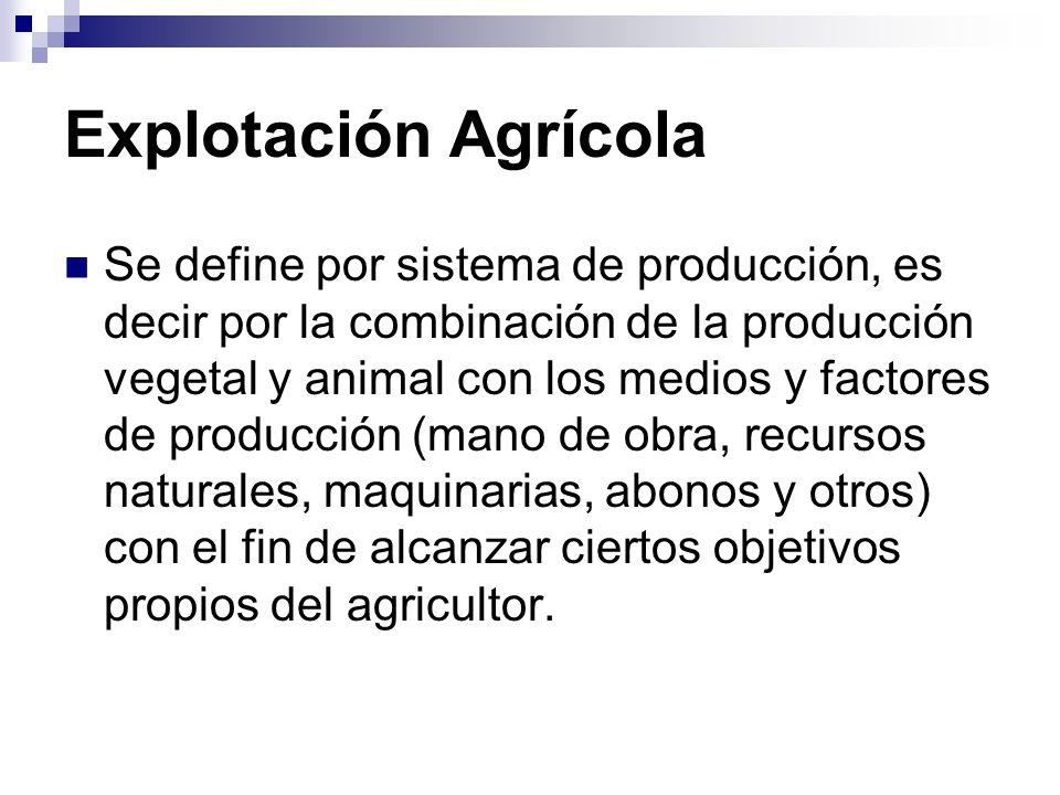 Explotación Agrícola
