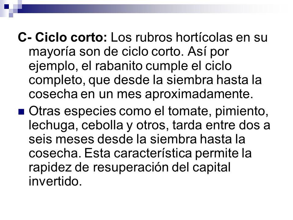 C- Ciclo corto: Los rubros hortícolas en su mayoría son de ciclo corto