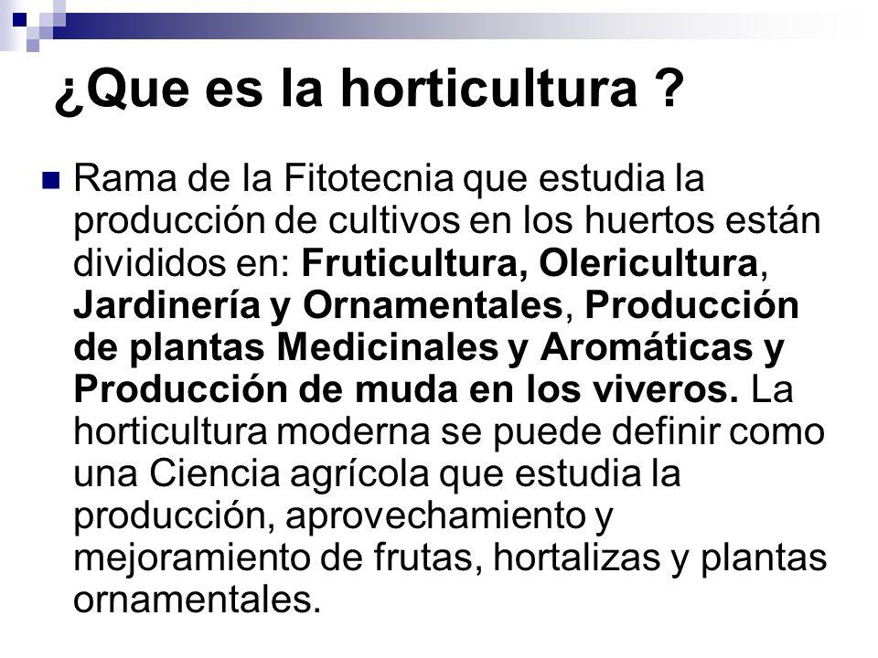 ¿Que es la horticultura