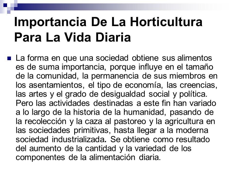 Importancia De La Horticultura Para La Vida Diaria
