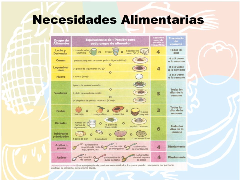 Necesidades Alimentarias