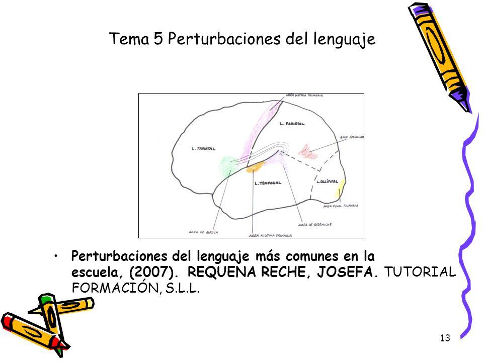 Tema 5 Perturbaciones del lenguaje