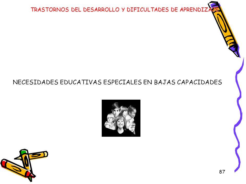 NECESIDADES EDUCATIVAS ESPECIALES EN BAJAS CAPACIDADES