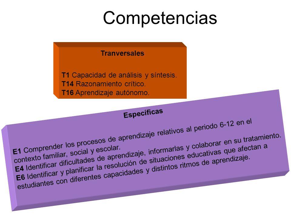 Competencias Tranversales T1 Capacidad de análisis y síntesis.